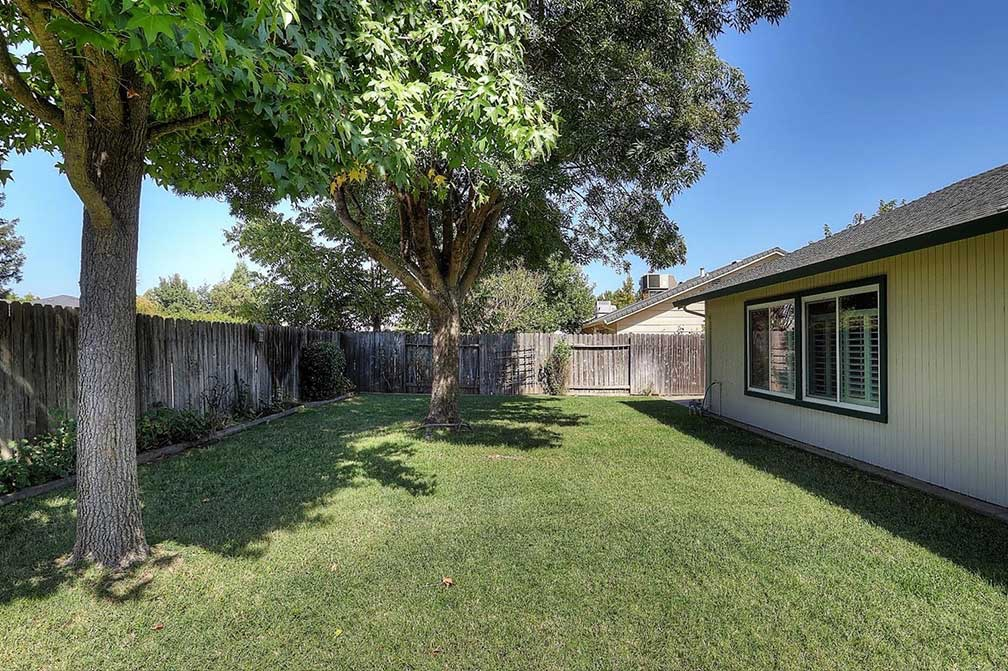 17054386_60(Backyard)